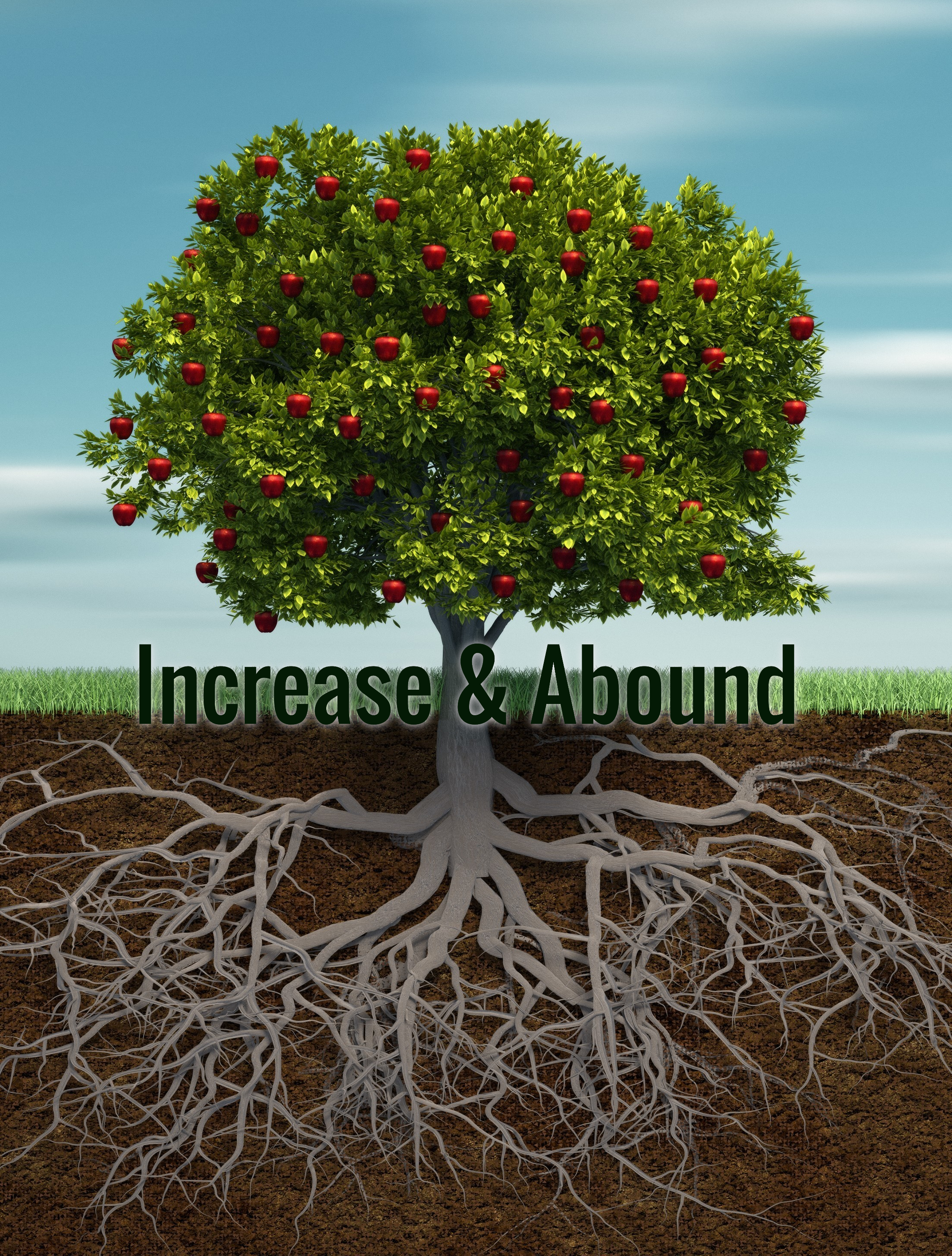 Increase and Abound